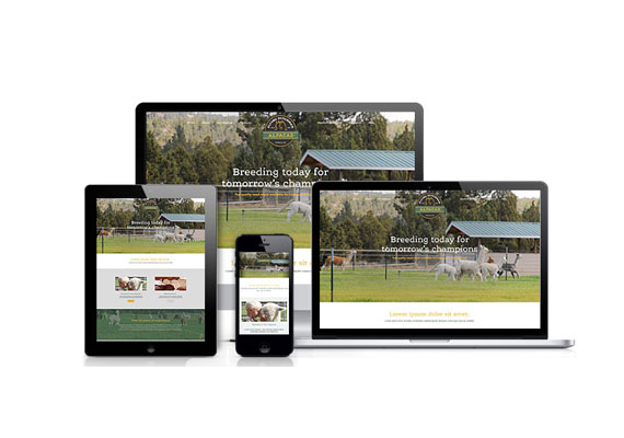 Flying Dutchman Alpacas was designed by Studio Absolute and developed by GelFuzion as part of our agency partnership. The site was built using Adobe Business Catalyst and is fully responsive.